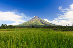 Perfect Shope Cone Volcano Smoking. Mayon Volcano a perfect cone shape behind a rice paddy in Legaspi, Southern Luzon, Philippines stock photo