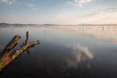 Perfect sky and clouds reflections on a lake, with a tree trunk. In the foreground Royalty Free Stock Image