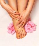 Perfect spa french nail pedicure Royalty Free Stock Photo