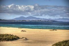 Perfect strand Stock Afbeeldingen
