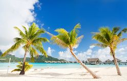 Perfect stranden på Bora Bora Arkivbild