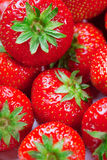 perfect strawberries. Royalty Free Stock Image