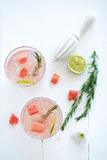 The perfect summer refreshment Royalty Free Stock Photography