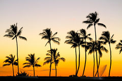 Perfect Sunset. A perfect sunset in Hawaii Royalty Free Stock Images