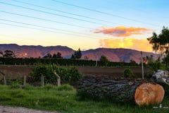 Perfect sunset stock photo