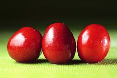 Perfect sweet cherries. Color delicious Royalty Free Stock Images