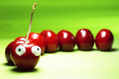 Perfect sweet cherries. Color delicious Stock Photography