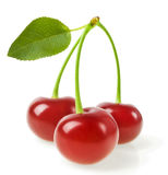 Perfect sweet cherries with the leaf isolated on a white background Royalty Free Stock Images