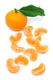 Perfect tangerine fruit Royalty Free Stock Photo