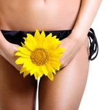 Perfect tanned woman body isolated Stock Photos