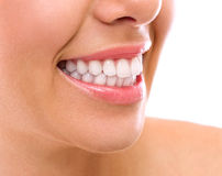 Perfect teeth Stock Image
