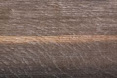 Perfect texture from very old wood bog oak with white line. Perfect texture from very old wood bog oak with white line royalty free stock image