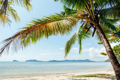 Perfect thai beach with a white sand Royalty Free Stock Image