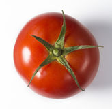 Perfect tomato. Red ripe tomato with stem on white background Royalty Free Stock Photography