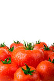 Perfect tomatoes with drops of water Royalty Free Stock Photography