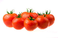 Perfect tomatoes with drops of water Royalty Free Stock Photo