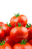 Perfect Tomatoes With Drops Of Water Stock Images