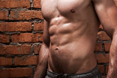 Perfect torso. Cropped image of young muscular man posing while standing against brick wall Stock Image