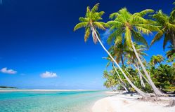 Perfect tropical beach Stock Photography