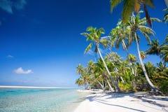 Perfect tropical beach. Beautiful beach at Tikehau atoll in French Polynesia Stock Photos