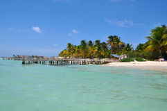 Perfect tropical beach in Isla Mujeres. Mexico, Yucatan royalty free stock photo