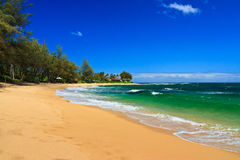 Perfect Tropical Beach, Kauai Hawaii Stock Image