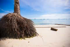 Perfect tropical beach with turquoise water and Royalty Free Stock Photos