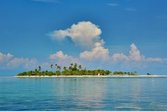 Perfect tropical island with palm trees Royalty Free Stock Photo