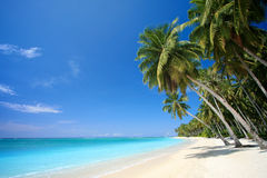 Perfect tropical island paradise beach Royalty Free Stock Photography