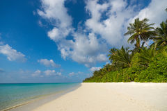 Perfect tropical island paradise beach.  Stock Photography
