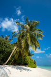 Perfect tropical island paradise beach Stock Photography