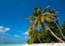 Perfect tropical island paradise beach Royalty Free Stock Image