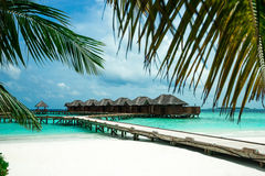Perfect tropical island paradise beach Stock Photos