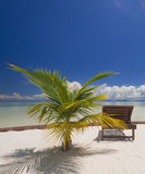 Perfect tropical island relaxation. Stock Photos