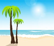 Perfect tropical white sand beach with palm trees Stock Images