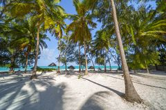 Perfect tropical white sandy beach with palm trees Stock Photo