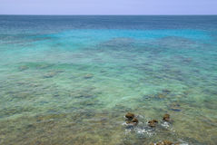 Perfect turquoise ocean Stock Photography
