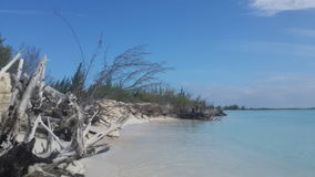 Perfect view of a beach in Cayo Largo Cuba. Royalty Free Stock Photography