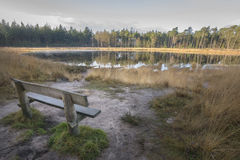 Perfect view from bench onto forest pond in autumn colored landscape Royalty Free Stock Photography