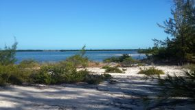 Perfect view of an isolated beach in Cayo Largo Cuba Royalty Free Stock Photography