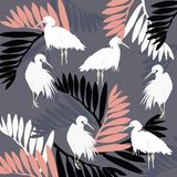Beautiful vector floral summer pattern background with pelican vector illustration