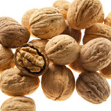 Perfect walnuts. Closeup of walnuts isolated on white background Stock Photos