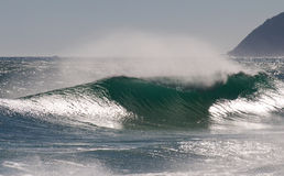 Perfect Wave. Glassy offshore wave breaks at Cape Town shore royalty free stock photos