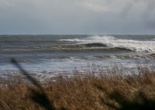 Perfect wave on a sunny day. A perfect wave on a sunny day Royalty Free Stock Photos
