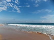 Perfect waves, Indian ocean. Great waves, ideal beach, Sri Lanka, Indian ocean stock images