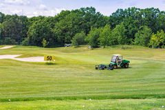Perfect wavy green ground on a golf course Royalty Free Stock Image