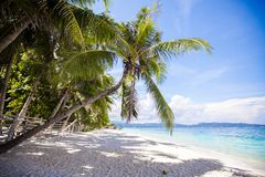 Perfect white beach with green palms and turquoise Royalty Free Stock Photos