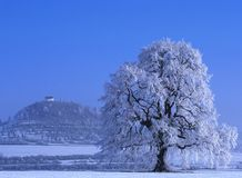 Perfect Winter Day #1 Stock Photography
