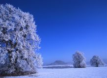 Perfect Winter Day #5 Royalty Free Stock Photos