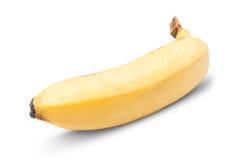 Perfect yellow banana Stock Photos